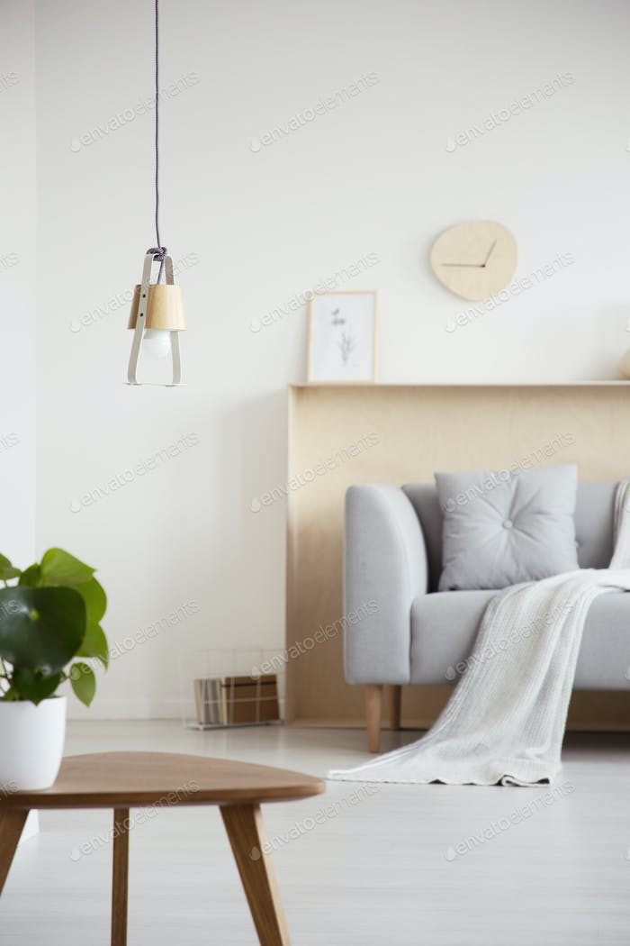 Handmade lamp hanging in white living room interior with fresh p