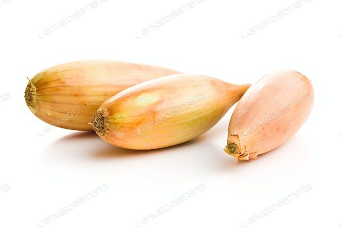 The golden shallot onion. Fresh bulbs.