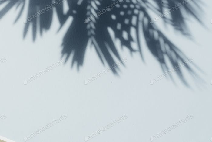 Palm leaf shadows on blue wall. Copy space. Backdrop texture for design