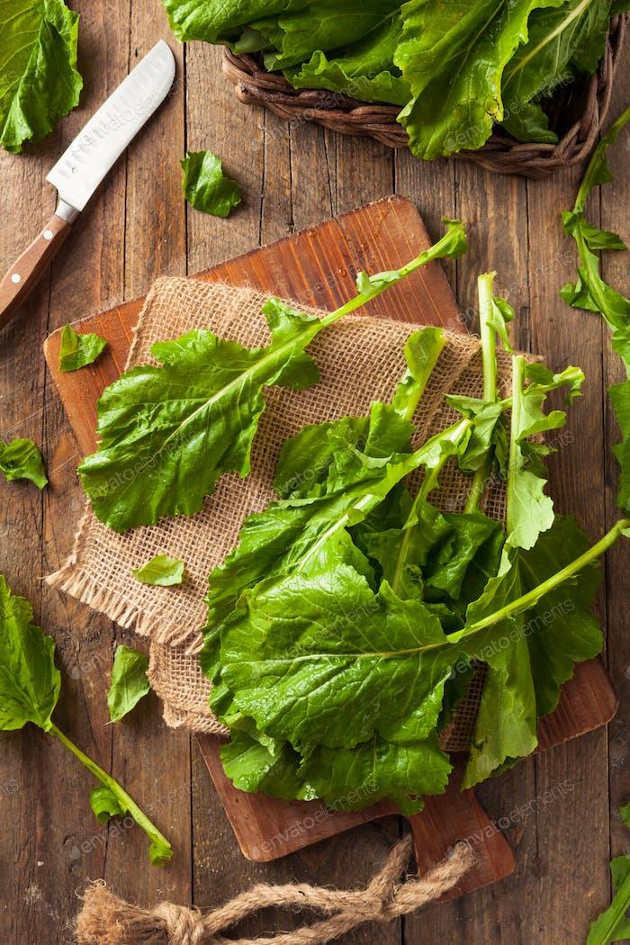 Raw Organic Turnip Greens