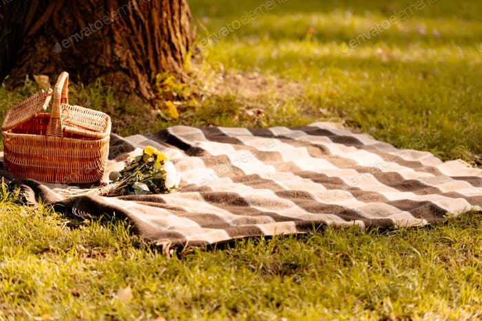 Empty picnic blanket and a basket on a grassy lawn