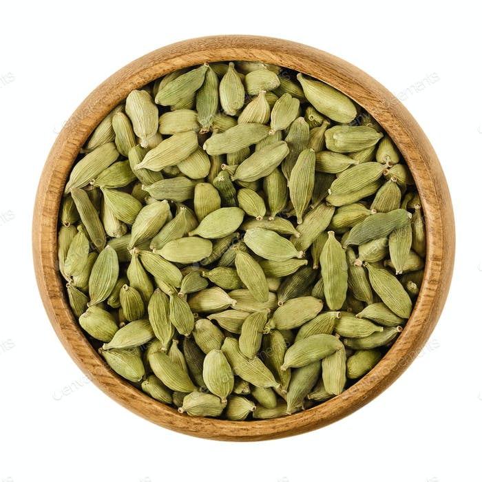 Cardamom pods in a bowl over white