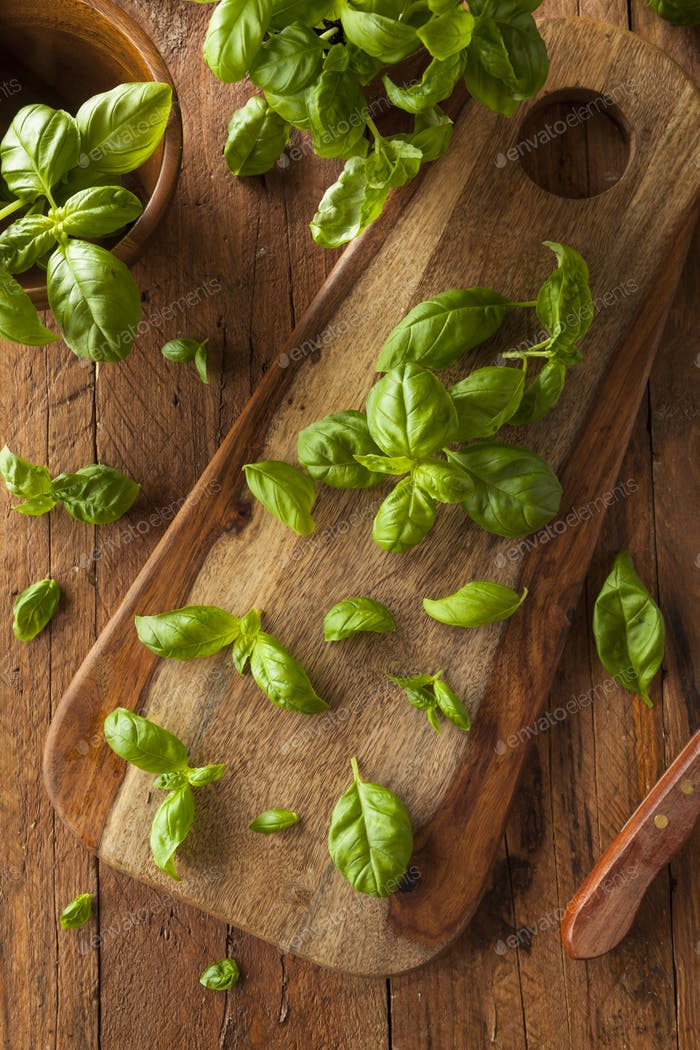 Raw Organic Green Basil