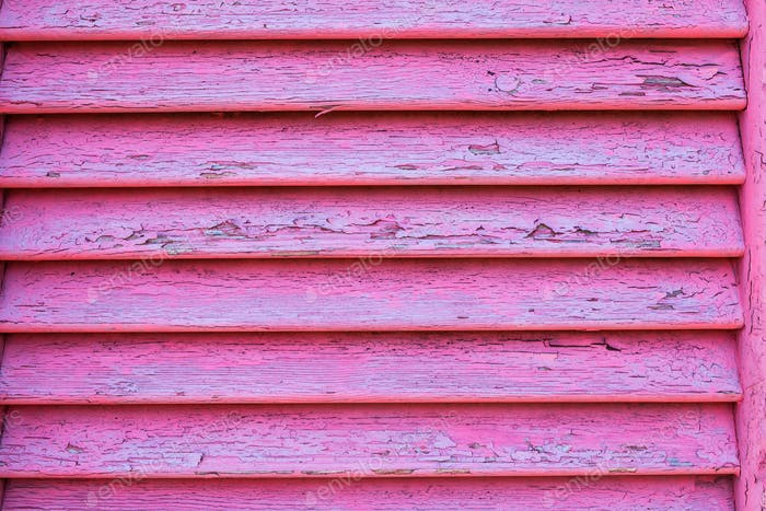 Texture from wooden window in pink color