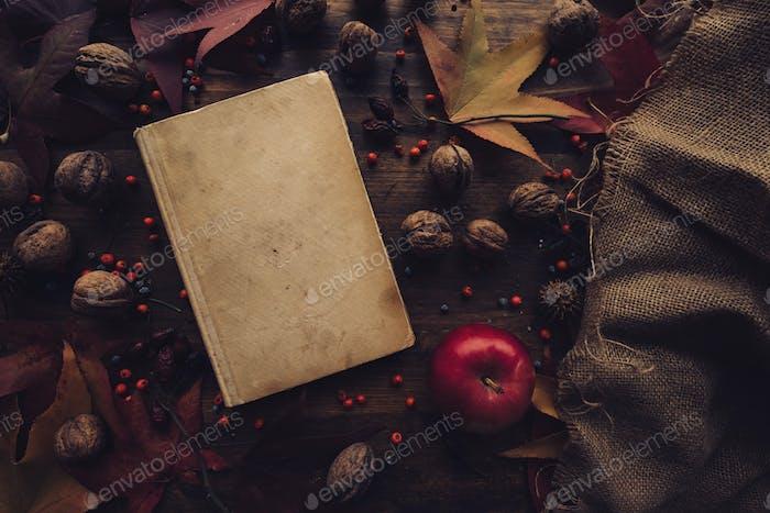 Flache Lay Top View Vintage Buch mit Herbstdekoration