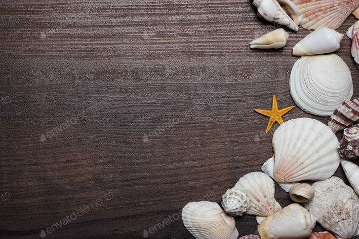 Seashells On The Brown Wooden Background