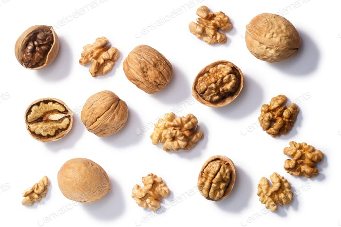 Walnuts j. regia seeds, paths, top