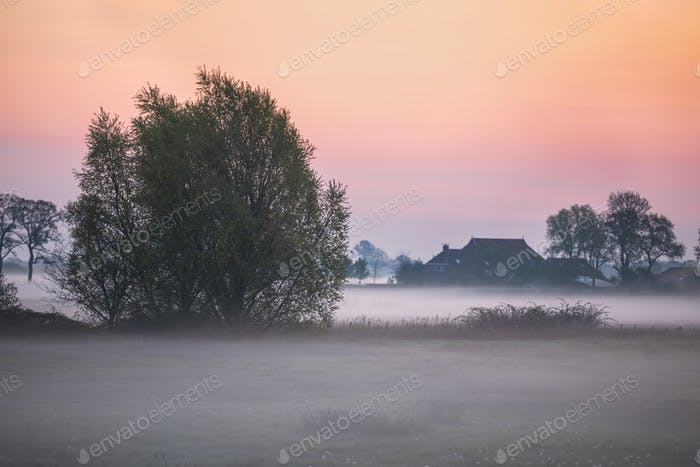 foggy sunrise on farmland
