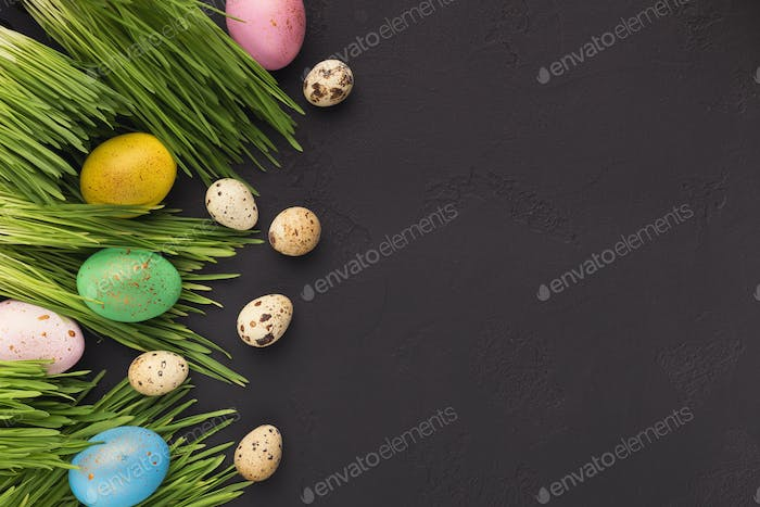 Colorful easter eggs in green grass on gray background