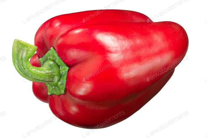 Yolo wonder sweet bell pepper