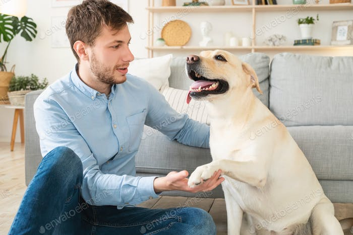 Young man playing with dog at home