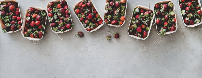 Fresh strawberries in plastic-free boxes over grey background, wide composition