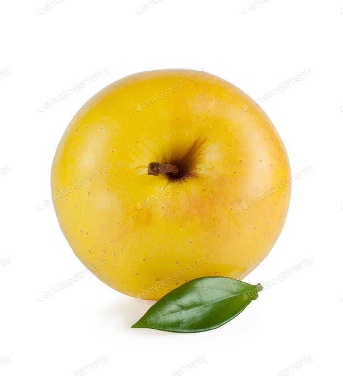yellow ripe juicy apple with a leaf