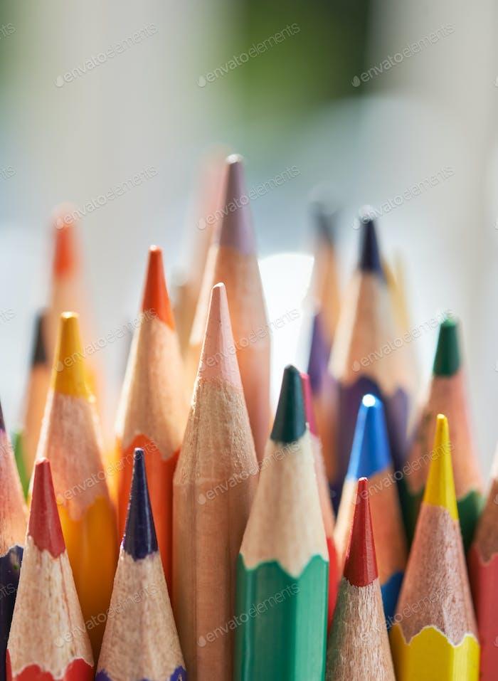 Nahaufnahme des Bündels des farbigen Bleistifts