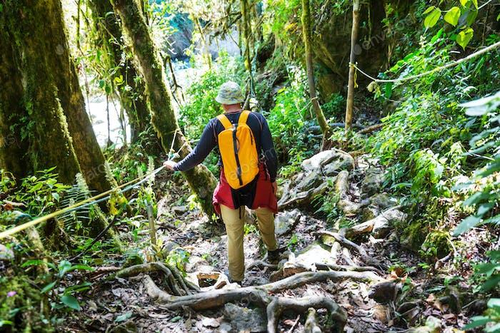 Wanderung in Costa Rica