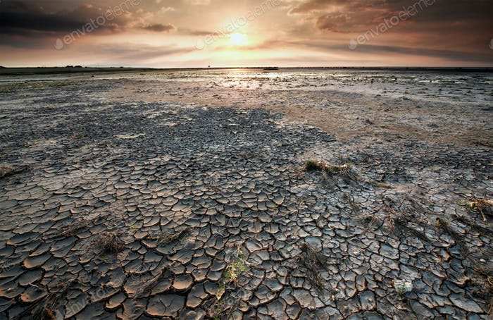 cracked mud on Wadden sea at low tide