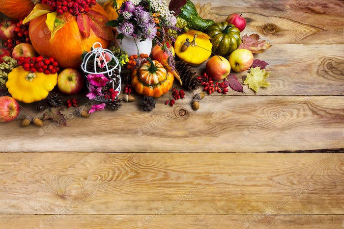 Thanksgiving background with pumpkins, decorated birdcage, copy
