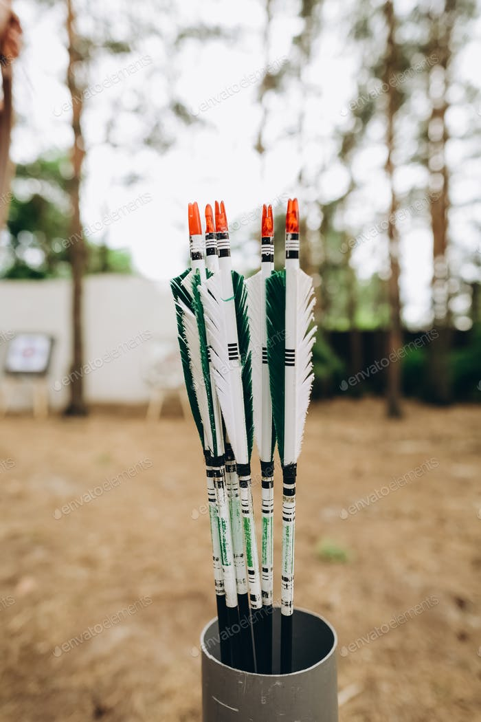 bow arrows sport interest accuracy sniper outside