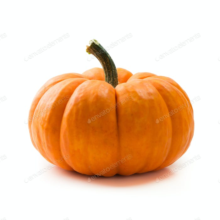 Fresh orange miniature pumpkin isolated