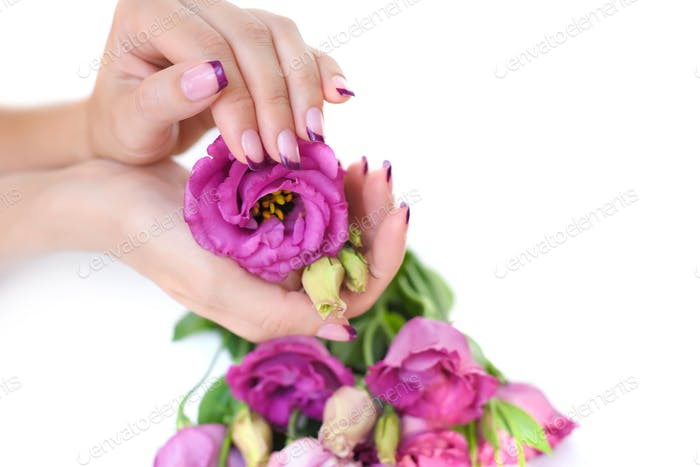 Hands of a woman with pink french manicure and flowers eustoma o
