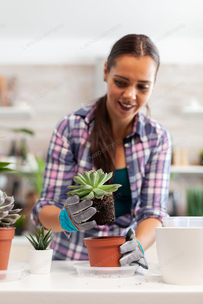Using fertil soil for plants
