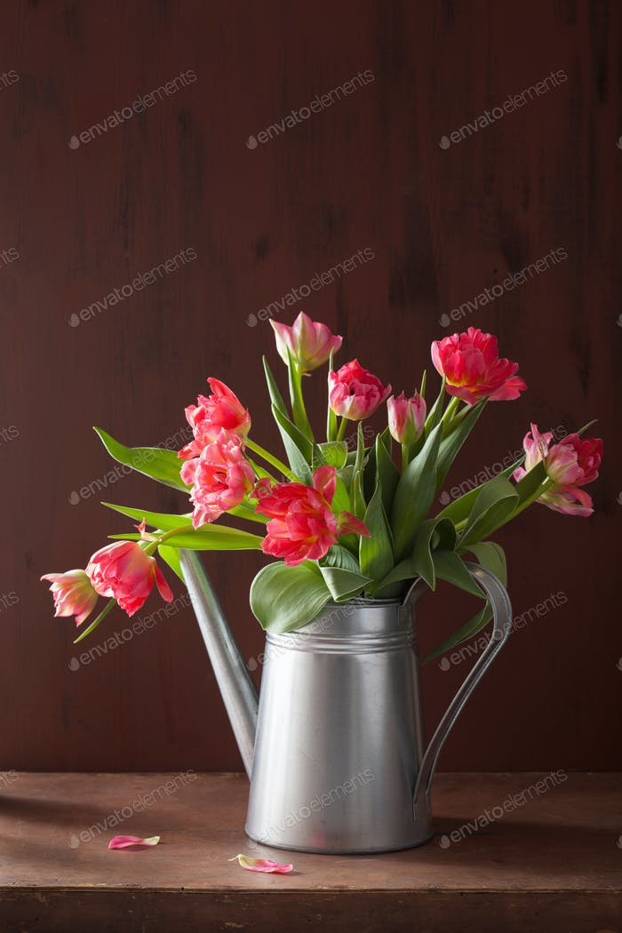 Thumbnail for beautiful pink tulip flowers bouquet in watering can