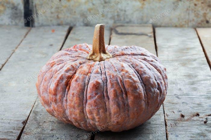 Pumpkin on wooden floor