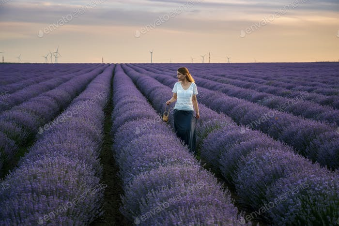 Woman in a lavender field