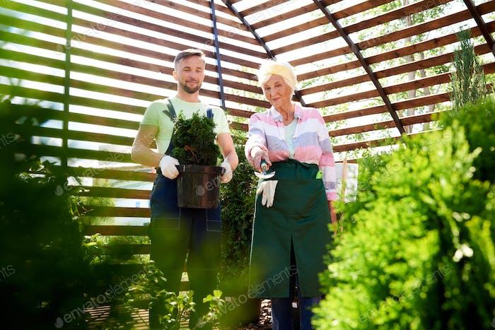 Zwei Gärtner in Botanisches Gewächshaus