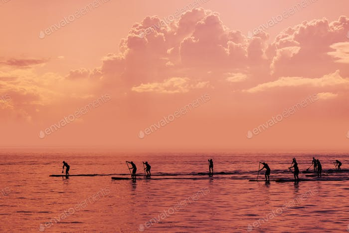 Stand up paddle boarding competition on open sea