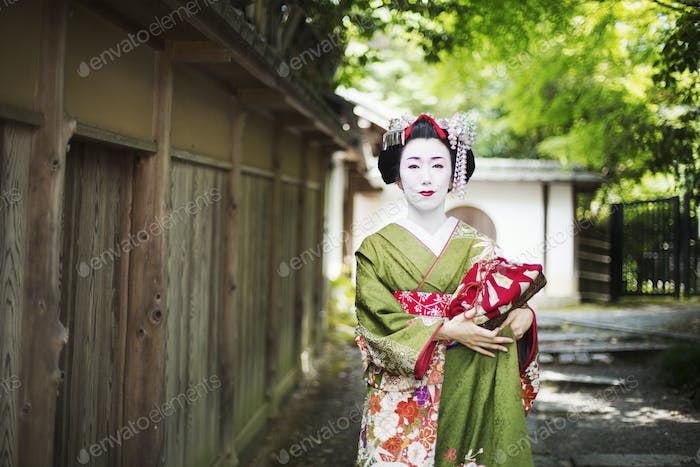 A geisha in traditional costume