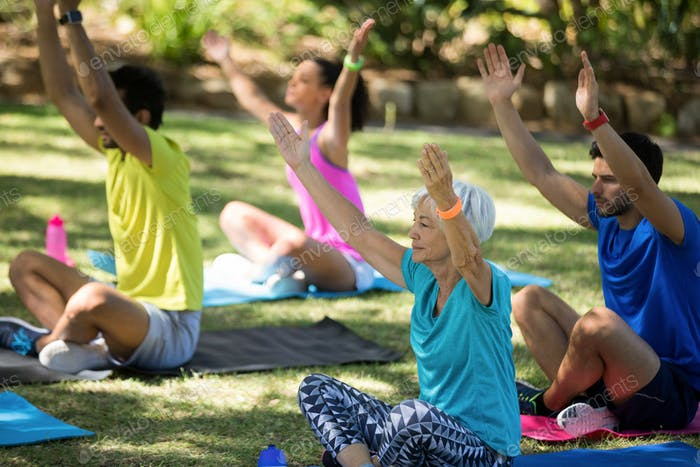 Group of people performing yoga in the park