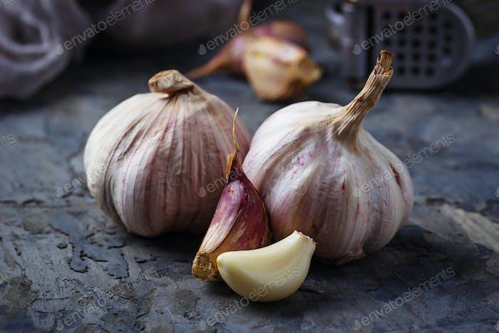 Fresh garlic on concrete background