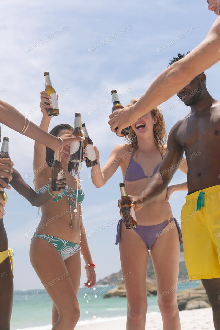 Happy group of friends toasting with beer bottle at beach on sunny day