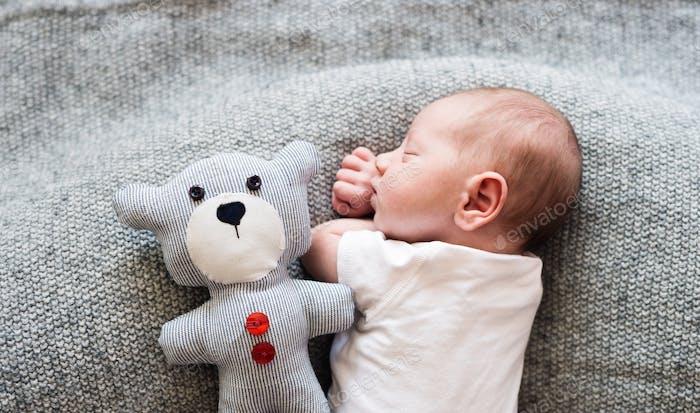 Newborn baby boy lying on bed with teddy bear, sleeping