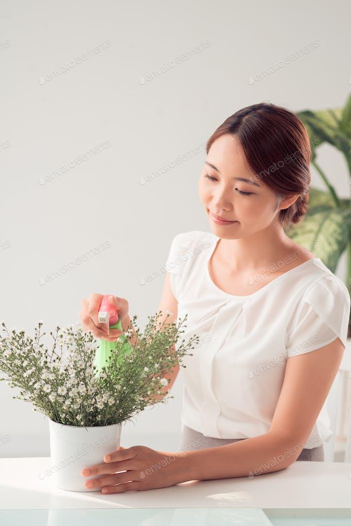 Planta pulverizadora