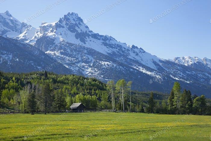 Horse Barn and Field Below Grand Teton Mountains