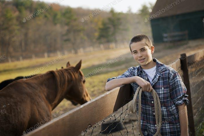 Ein Junge, der am Zaun eines Pferdekoppel steht. Ein Lorbeerpferd.