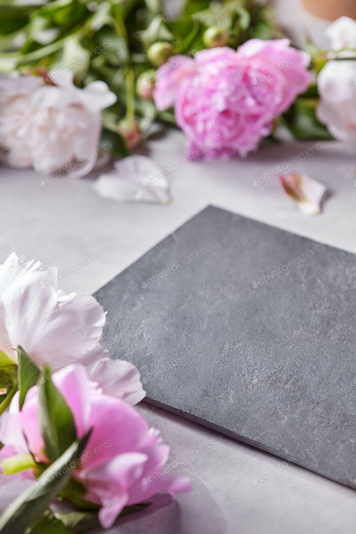 Schieferbrett verziert mit Blütenblättern und rosa Blüten von Pfingstrosen auf einem grauen Betonhintergrund mit