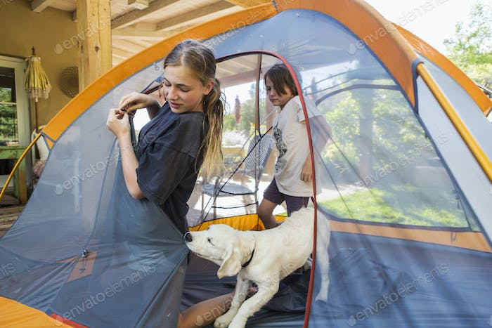 Teenage girl and her younger brother setting up a tent, a cute puppy tugging the tent fabric.