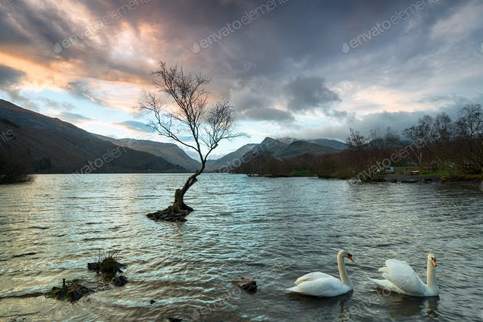 Llyn Padarn in Snowdonia