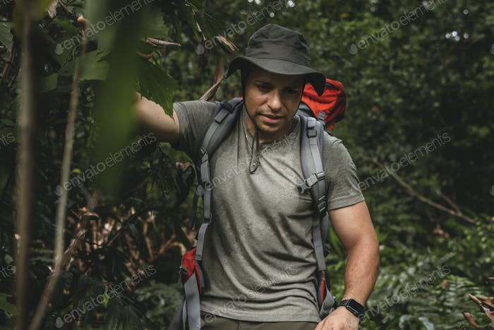 Male backpacker trekking in the forest