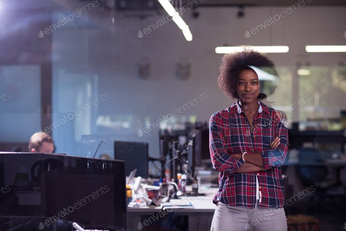 portrait of a young successful African-American woman in modern