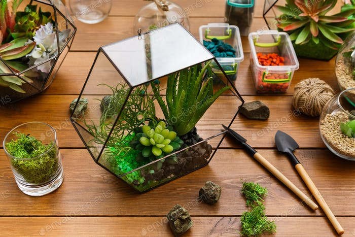 Florarium and tools on table