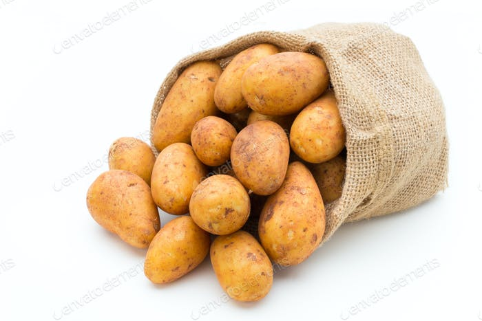A bio russet potato isolated white background.