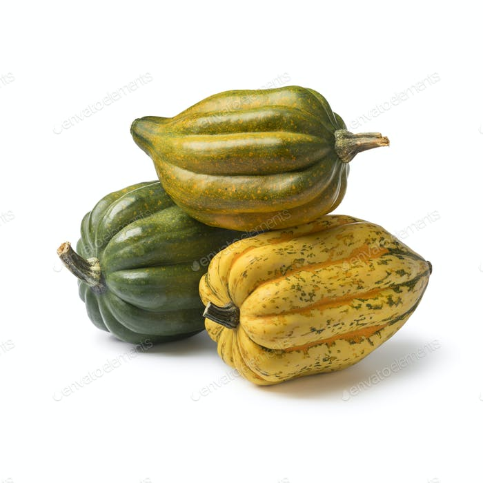 Fresh whole acorn squashes close up