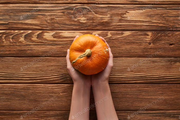 Cropped View of Woman Holding Small Ripe Pumpkin of Wooden Surface