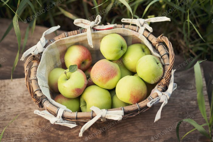 Fresh green apples in a basket