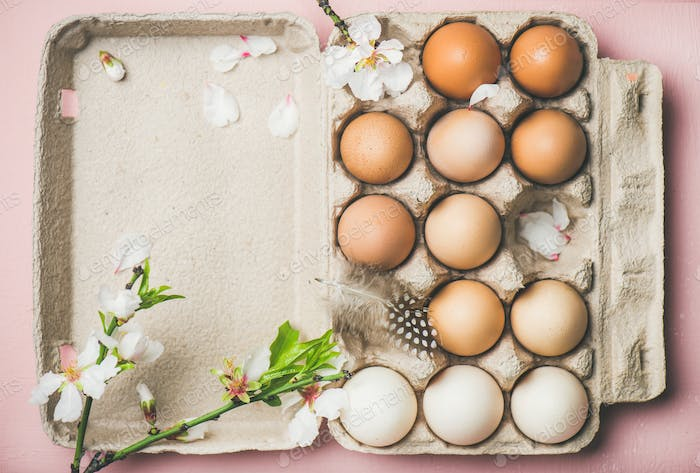 Natural colored eggs in box for Easter