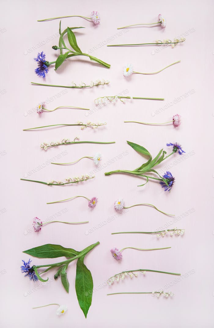 Flat-lay of lily of the valley, cornflower, daisy and peony garden flowers in rows, vertical